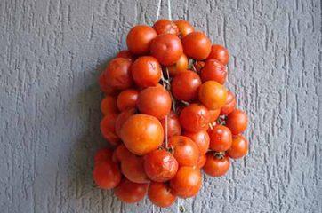 passaggio-1-maccheroncini-con-pomodori-da-pendola