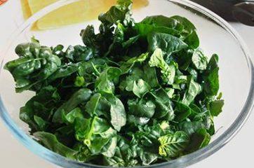 Cannelloni ricotta e spinaci 1