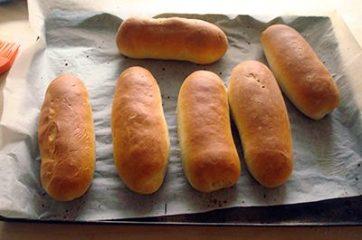 Panini da hot dog 18