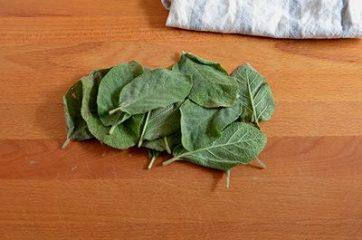 Salvia Fritta 1